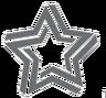 Southern Star Tours